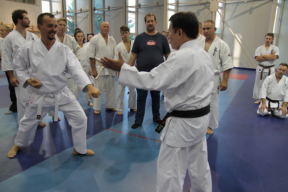 Ushiro Sensei demonstrating the technique to each participant