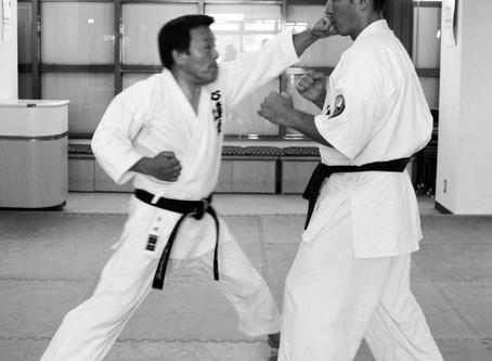 Karate and Ki from Kenji Ushiro Juku-Cho is now available on Kindle.