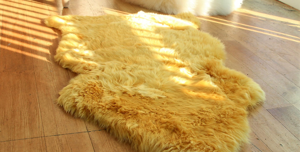 Mustard Single Fleece Sheepskin Rug