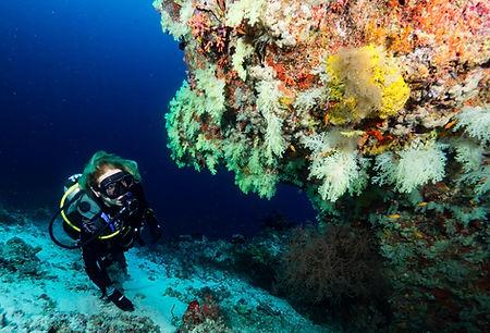 Scuba-diving-maldives.jpg