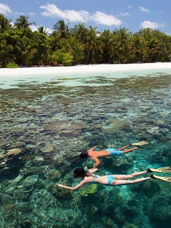 Vilamendhoo Snorkeling