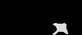 malediven tauchsafari