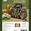 Thumbnail: Insulated Lunchbox - Mossy Oak® Shadow Grass Habitat®