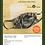 Thumbnail: Face Mask Kit - Realtree® Edge©