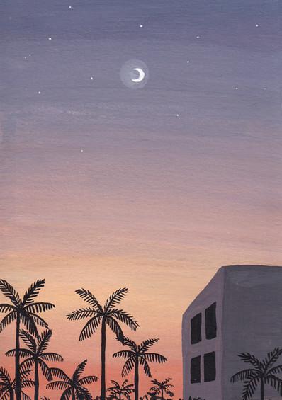 Baby Paintings - Sri Lankan Sunset