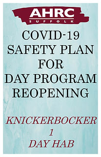 Safety Plan image-Knick1 DH.jpg
