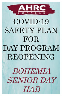 Safety Plan image-Boh Senior DH.jpg