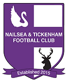 Nailsea and Tickenham Football Club