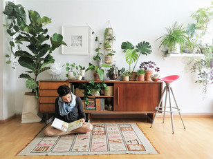 כל מה שצריך לדעת על השקיית צמחים בבית