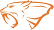 saber orange.png