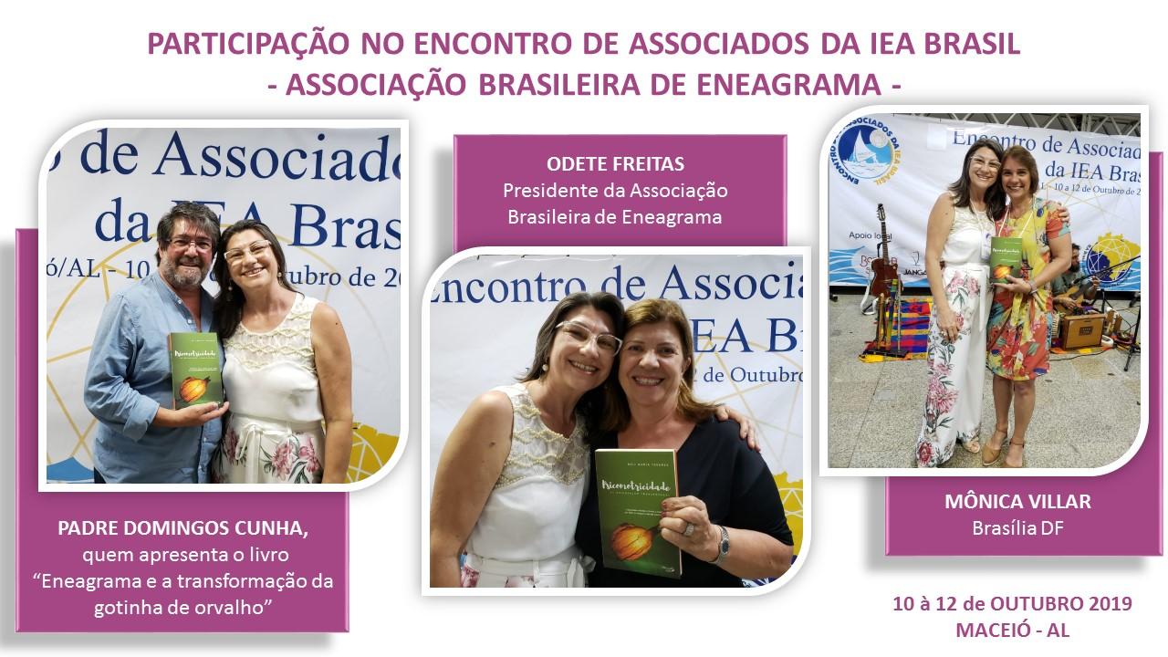 ENCONTRO IEA BRASIL 2019
