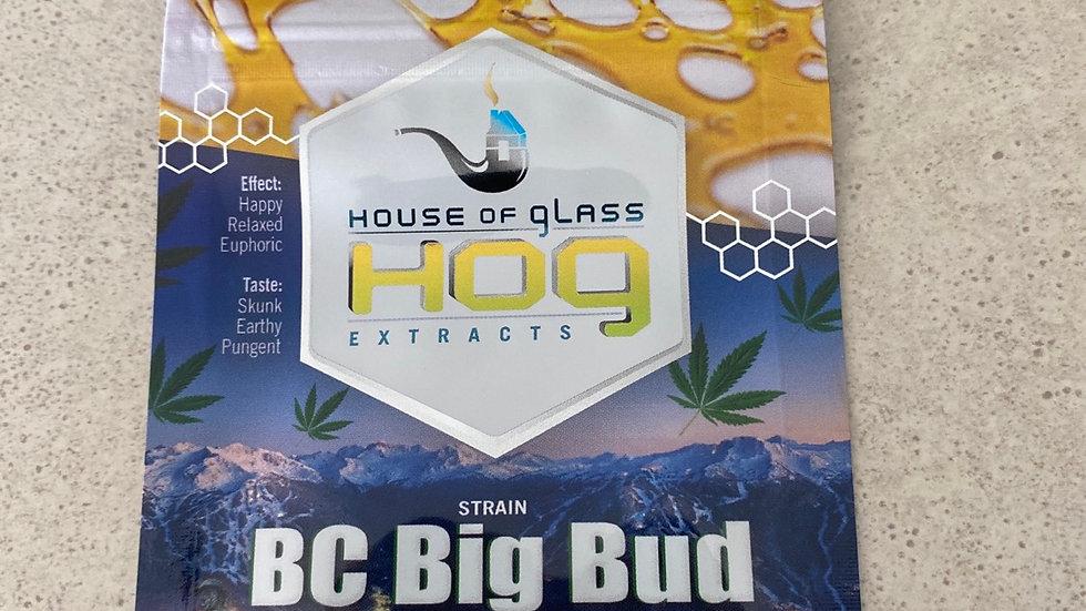 HOG (BC Big Bud)