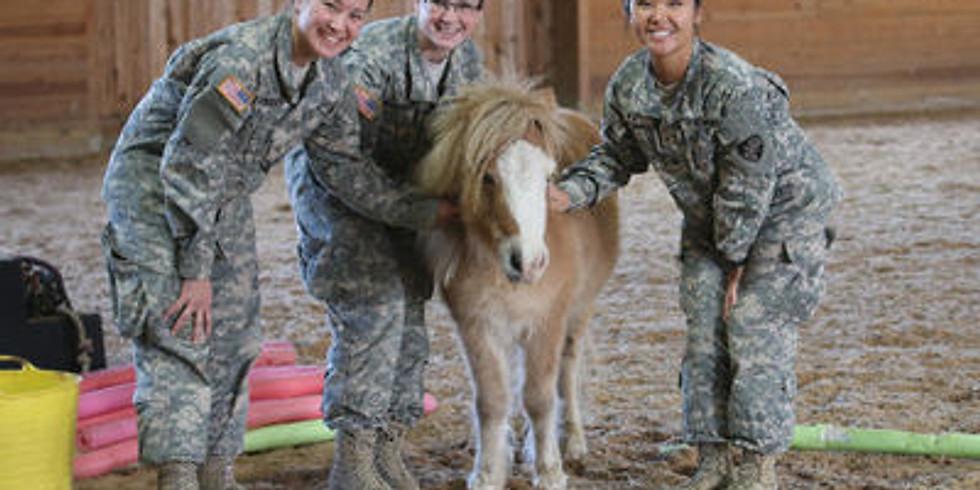 Topfield Talk: Therapeutic Horsemanship & Veterans