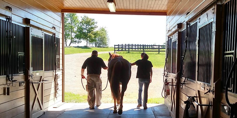 Community Day @ Topfield Equestrian Center