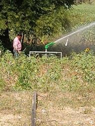 Irrigation - 16.jpg