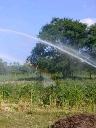 Irrigation - 14.jpg