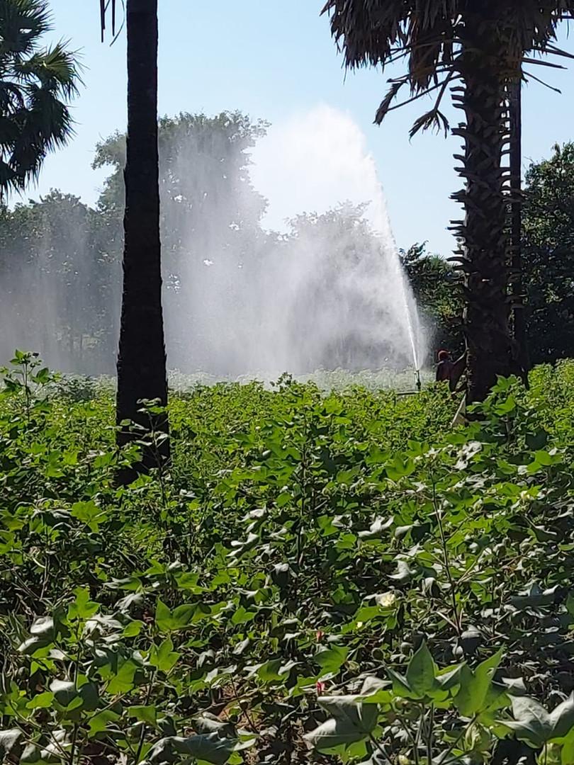 Irrigation - 25.jpg
