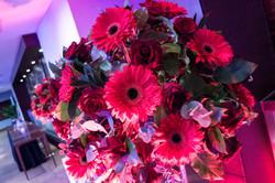Flowers_DSC_0141