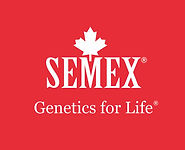 Semex GFL white on 187 red cropped.jpg