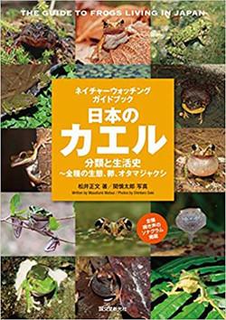 日本のカエル 分類と生活史~全種の生態、卵、オタマジャクシ (ネイチャーウォッチ