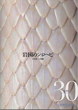 週刊 日本の天然記念物 動物編 岩国のシロヘビ 30