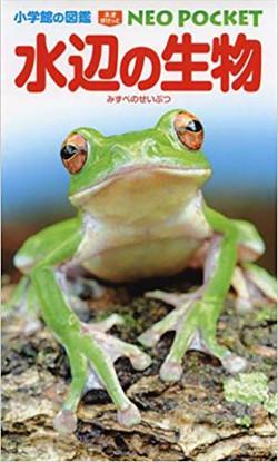 小学館の図鑑 NEO POCKET -ネオぽけっと-水辺の生物