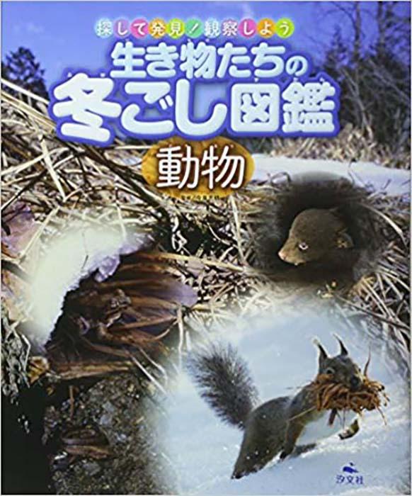 生き物たちの冬ごし図鑑 動物 (探して発見!観察しよう)