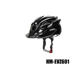 HM-EVZ601-01