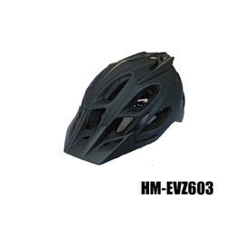 HM-EVZ603-01
