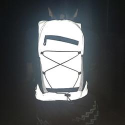 BG-EVR Reflective Backpack (39)