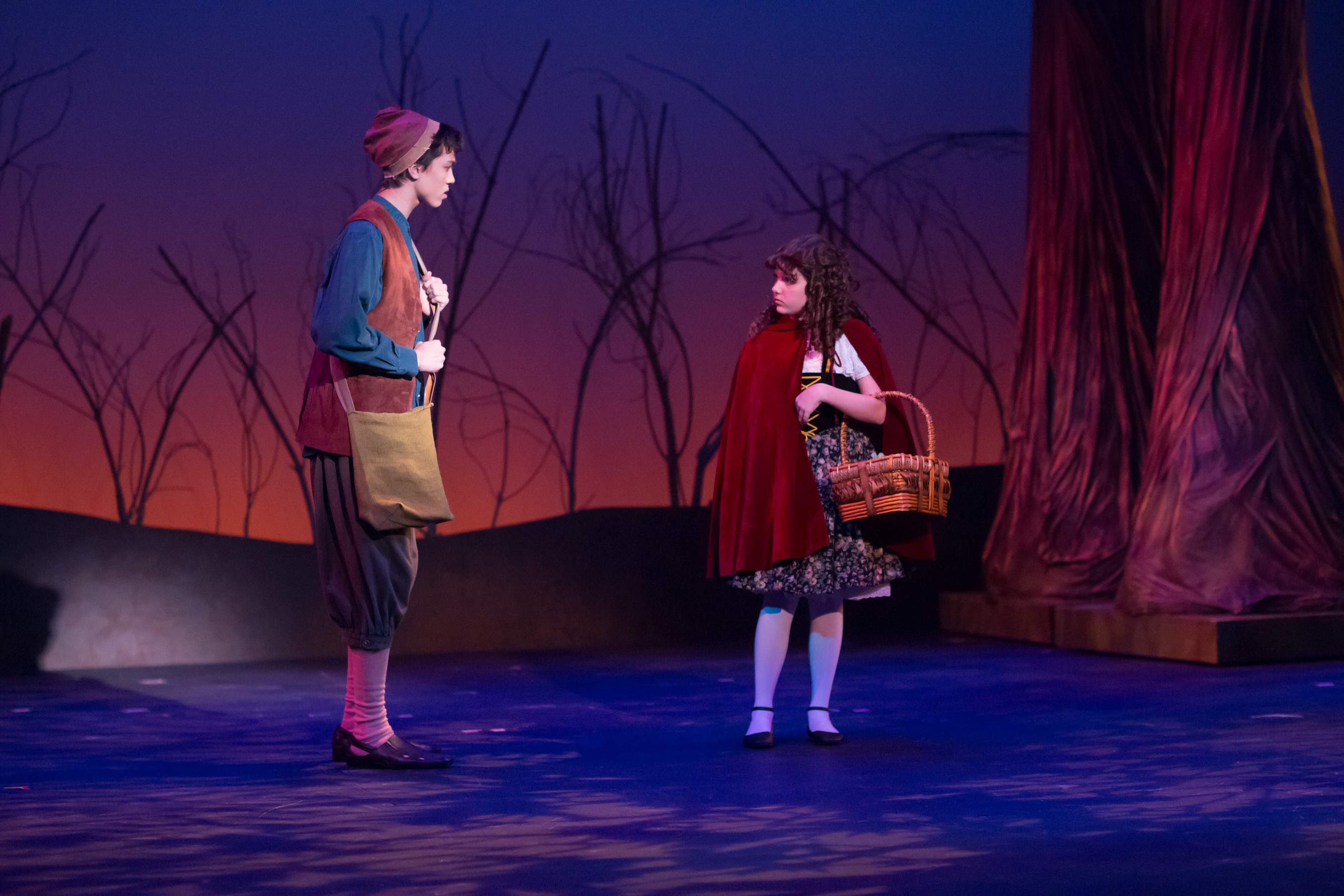 """Into The Woods"" 