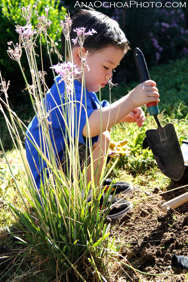 gardenboy.jpg