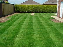 Lawn-Wallpaper-Free.jpg
