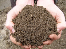 top-soil_41cac8e6e04183c56213934fcf72baf