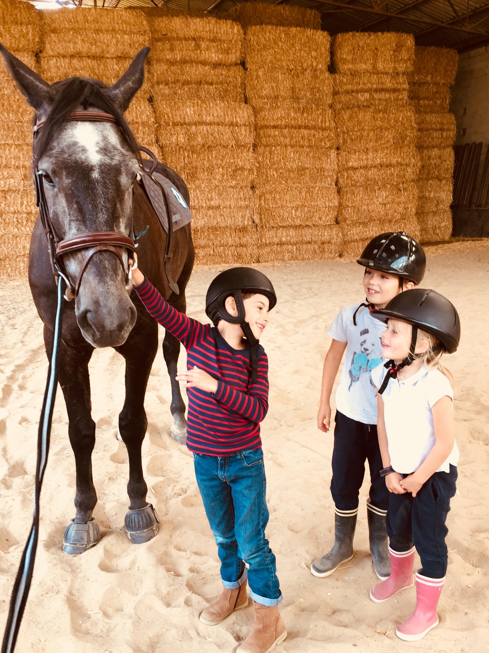 stage poney montfort lamaury enfants vac