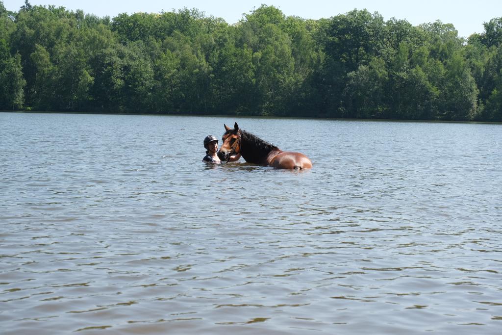 equitation galluis balade a cheval baign