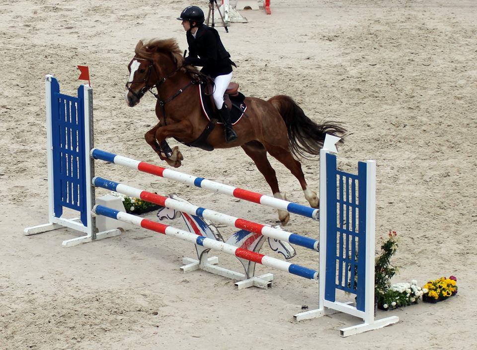 les petites ecuries concours st quentin cso poney cheval
