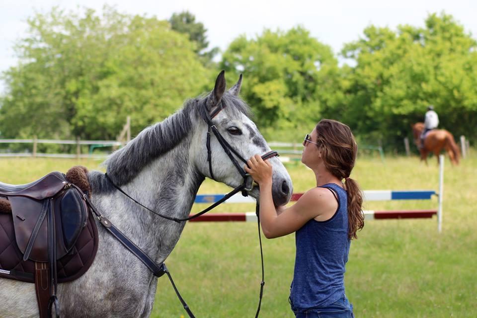 Les_Petites_Écuries_actualité_concours_poney_équitation_galluis_78_4