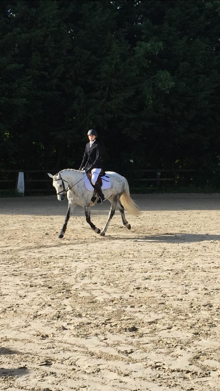 Les_Petites_Écuries_actualité_concours_poney_équitation_galluis_78_14
