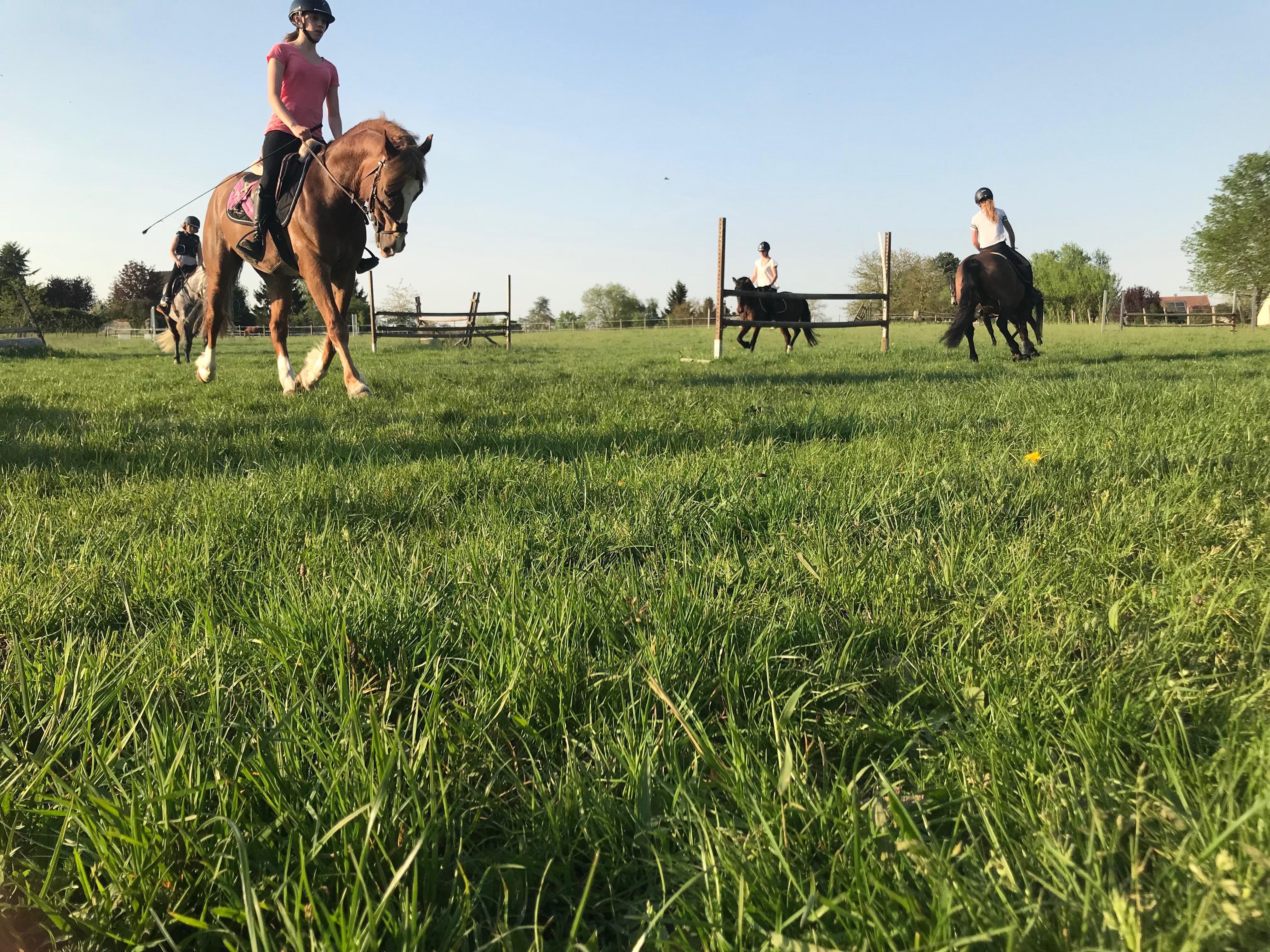 masterclass les petites ecuries poney equitation
