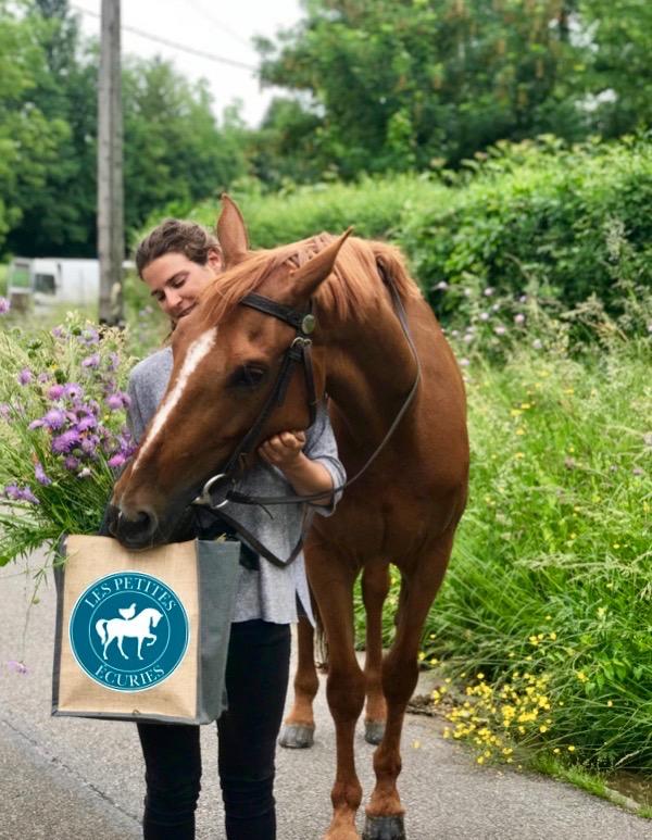 Les_Petites_Écuries_actualité_concours_poney_équitation_galluis_78_22