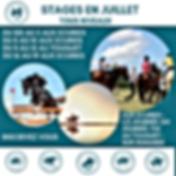 stage équitation vacances juillet gallui
