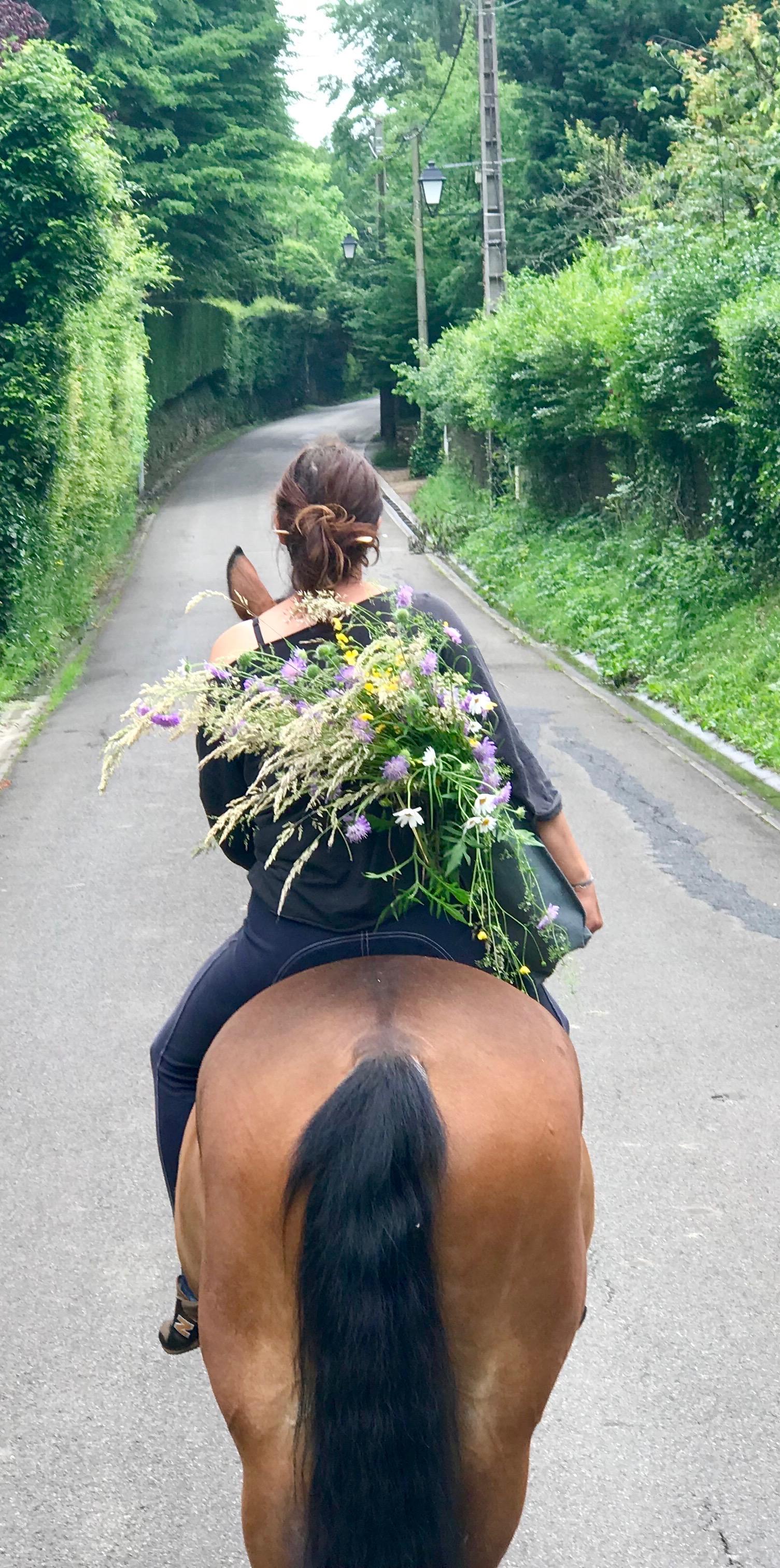 Les_Petites_Écuries_actualité_concours_poney_équitation_galluis_78_7