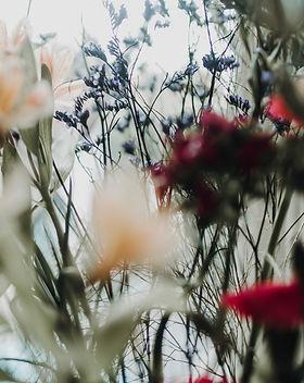 flowers-001.jpg