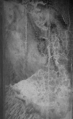 Dance of Cells