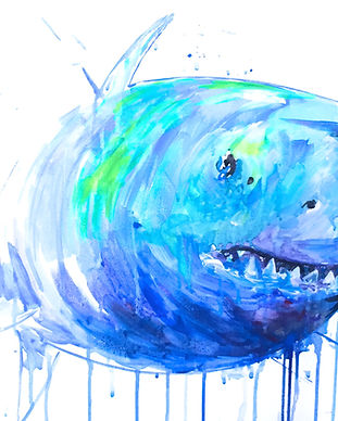 Shark Painting Missy Tripp Ronquillo
