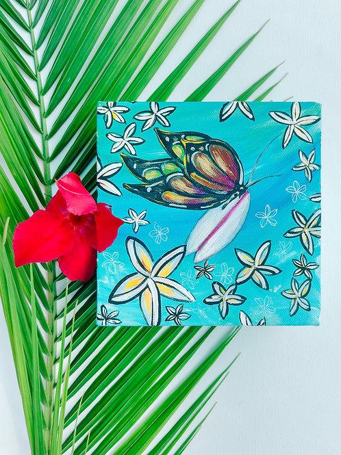 Dance Of the Butterflies in Love