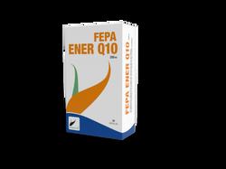 ENER Q10