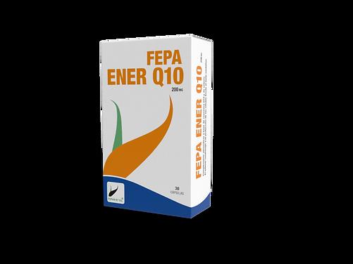 ENER Q10.png