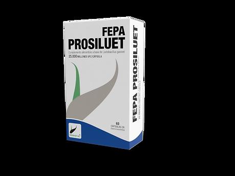 PROSILUET.png